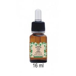 Agave - Preparado de Aceites Esenciales Piel Normal Mixta 16 ml