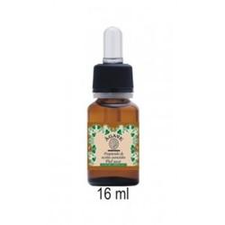Agave - Preparado de Aceites Esenciales Piel Seca 16 ml