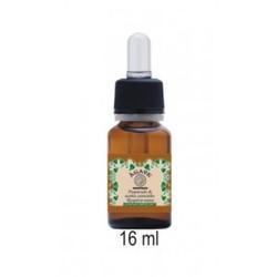 Agave - Preparado de Aceites Esenciales Respiración Sana 16 ml