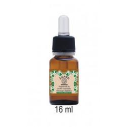 Agave - Preparado de Aceites Esenciales Drenaje Linfático 16 ml